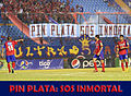 PIN SOS INMORTAL.jpg