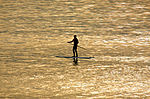 Paddle surfing 1 2007.jpg