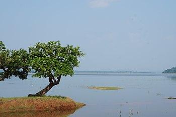 Pakhal lake.jpg