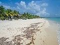 Palancar beach Cozumel Mexico (21202561798).jpg