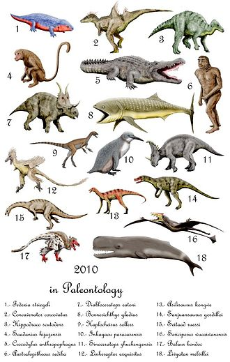 2010 in paleontology - Important taxa described (but not necessarily validly named) in 2010