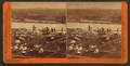 Panorama of Portland and the Willamette River, Oregon, by Watkins, Carleton E., 1829-1916.png