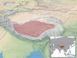 Tibetan antelope - Image: Pantholops hodgsonii distribution