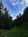 Parco naturale Orsiera Rocciavrè5.jpg