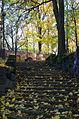 Park Bednarskiego w Krakowie 20151101 1157.jpg