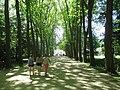 Park of the Château de Chenonceau.jpg