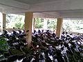 Parking Area STM 11 Cibubur (2).jpg