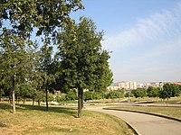 Parque Montigalà.jpg