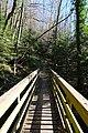 Passerelle sur le Ruisseau de la Mine @ Lathuile (51017258190).jpg