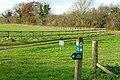 Pasture at North Standen - geograph.org.uk - 1052452.jpg
