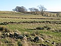 Pastures above The Hope - geograph.org.uk - 683059.jpg