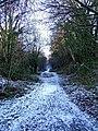 Path along former railway cutting - geograph.org.uk - 1638832.jpg