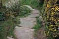 Path to Orlock (3) - geograph.org.uk - 396069.jpg