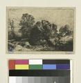 Paysage. Saules (NYPL b14917537-1218215).tiff