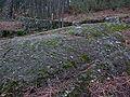 Pedra da Moura ou Pedra de Fragoselo, Coruxo, Vigo.jpg