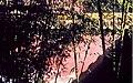 Pekín, Ciudad Prohibida 1978 11.jpg