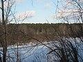 Pervomaysky District, Tomsk Oblast, Russia - panoramio (49).jpg