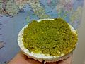 Pesto Genovese Rise Waffer.jpg