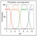Phosphoric4.png
