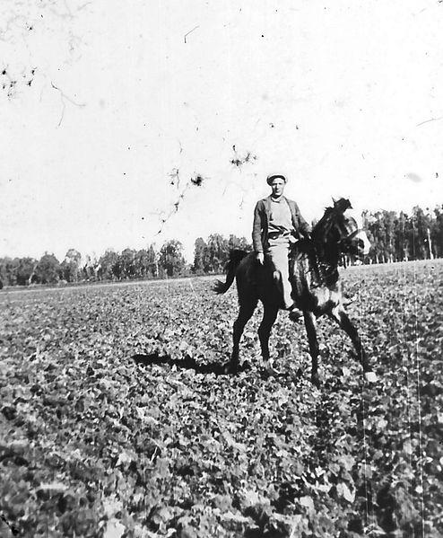 גן-שמואל-שומר וסוסו בשדה 1935