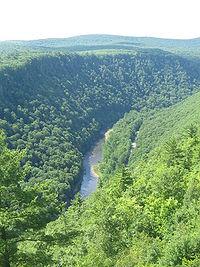 Pine Creek Gorge, north from Leonard Harrison State Park.JPG