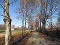 Pista ciclabile Parco Chico Mendes.JPG