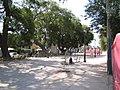PlazaLosCeibos.jpg
