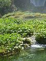 Plitvice lakes (47).JPG