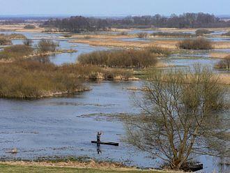 Ramsar sites of Poland - Biebrza River in Biebrza National Park at Burzyn