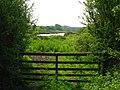 Pond at Heiferlaw Bridge - geograph.org.uk - 466619.jpg