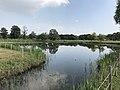 Pond in Yoshinogari Historical Park 1.jpg