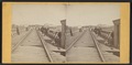 Portage Bridge, by Knight, W. M., 1841-1881.png
