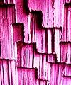 Post modern wall.jpg