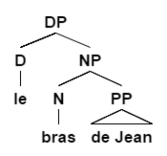 Inalienable possession - de Jean is a postnominal possessor – it occurs after the noun. Sentence adapted from Guéron 2007: 590 (1a)