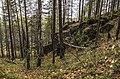 Prigorodnyy r-n, Sverdlovskaya oblast', Russia - panoramio (141).jpg