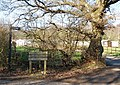 Private Road - geograph.org.uk - 689764.jpg