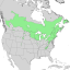 Prunus pensylvanica range map 1.png