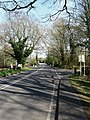 Pulborough Road, Cootham - geograph.org.uk - 1239921.jpg