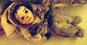 Saqqaq - The mummy of a six-month-old boy found in Qilakitsoq