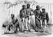 Aboriginal tracker - Wikipedia
