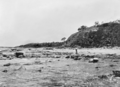 Queensland State Archives 1119 Alexander Headland looking South December 1930.png