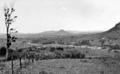 Queensland State Archives 271 Pinbarren Noosa Shire looking towards Cooran c 1931.png