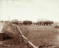 Queensland State Archives 3981 Hay carting by horse wagons Green Hills Farm near Warwick 6 November 1894.png