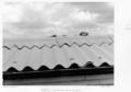 Queensland State Archives 4904 Geebung State School roofing Brisbane September 1953.png