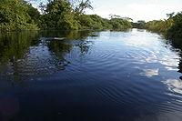 Río Yacuma con delfines Rosados (Beni - Bolivia).jpg