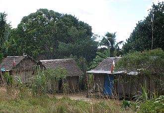 Architecture of Madagascar - The most traditional coastal style: houses with thatched roofing of ravinala on low piles in Sambava