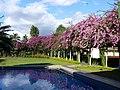 Raffles Gateway Hotel, Nadi, Fiji.jpg