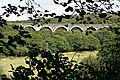 Railway Viaduct through the Trees. - geograph.org.uk - 226322.jpg