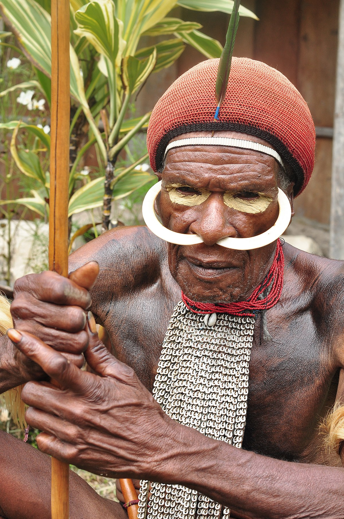 Apa Nama Pakaian Adat Papua
