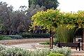 Ramat aNadiv park, Israel (12742880744).jpg